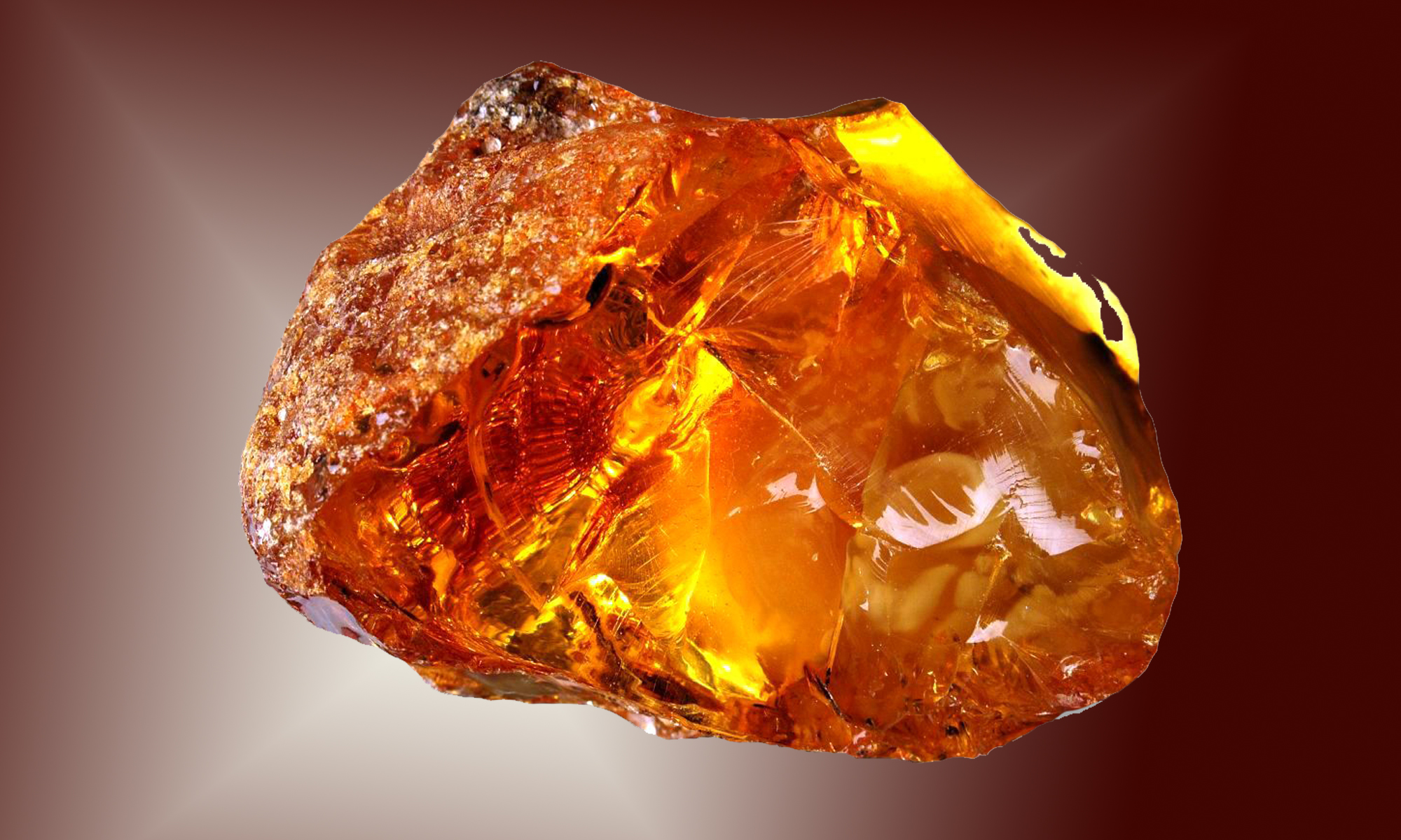 Baltic Amber Acid